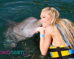 Dolphin Discovery Hosts Miss Swimsuit USA International Finalists